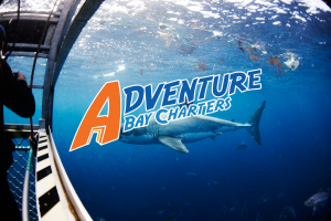 adventure_bay_charters_thumb