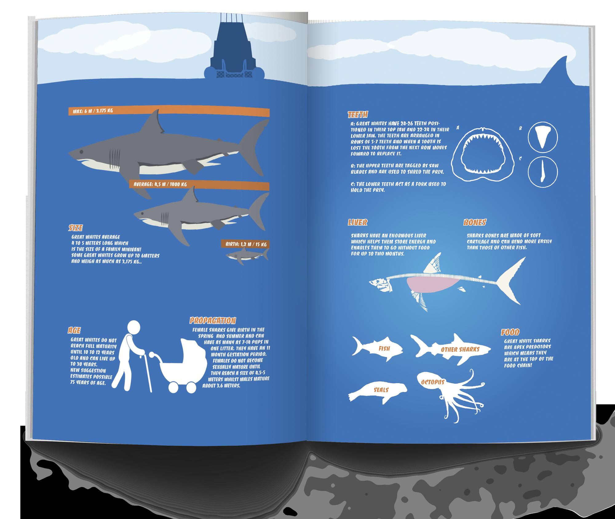 shark_fact